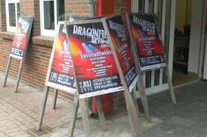 dragonfield05